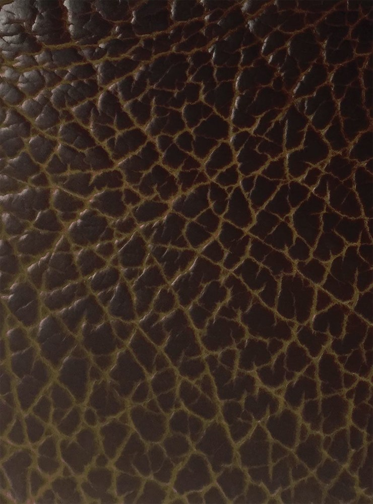gold-dragon-leather
