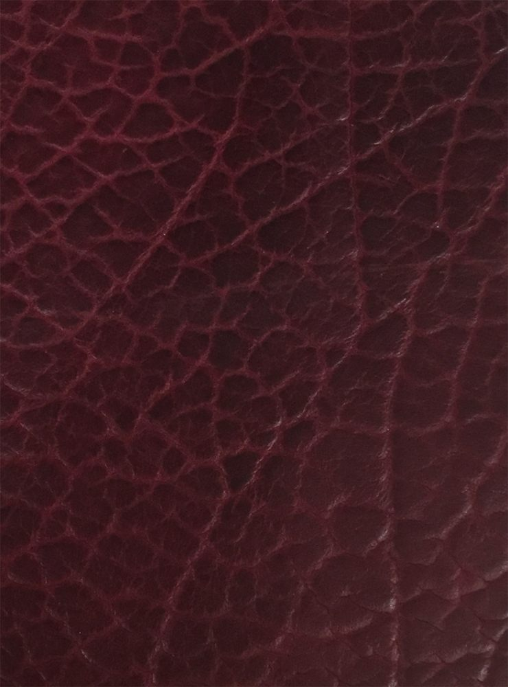 red-dragon-leather